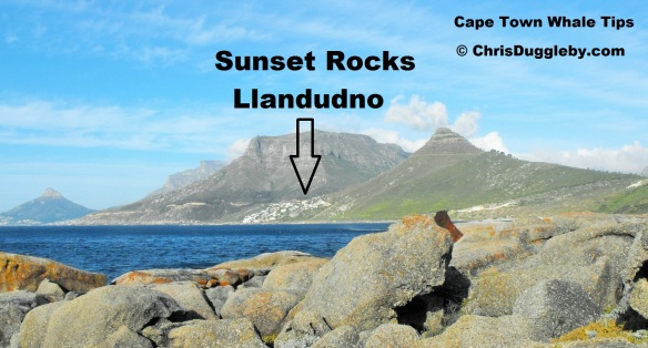 Cape Town Whale Spotting Tips - Chose a remote location like Sunset Rocks